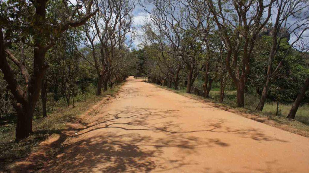スリランカのシーギリヤロツクの外周