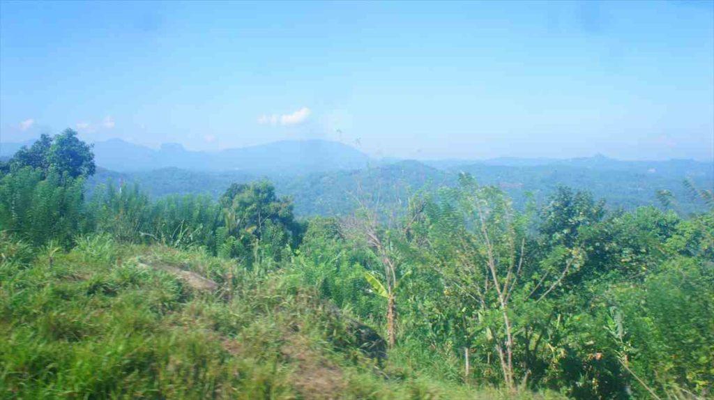 コロンボからキャンディの景色