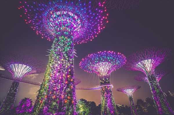 シンガポールひとり旅ガーデンズバイザベイのライトアップ