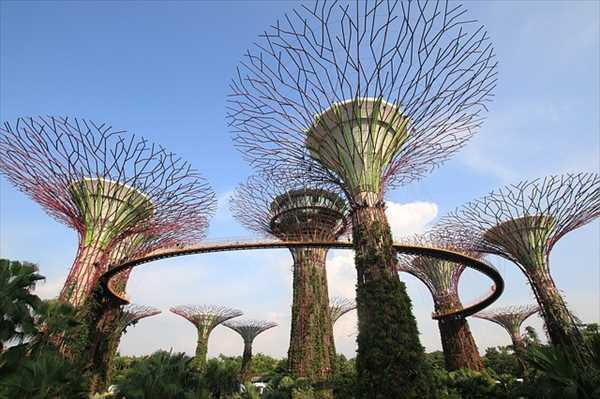 シンガポールひとり旅ガーデンズバイザベイの昼